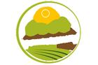 DSCC CONSULTING Logo